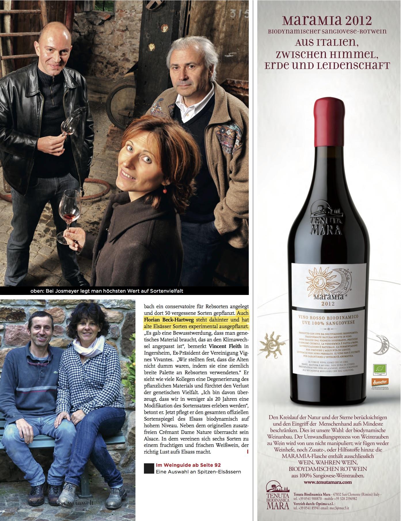 Weinwelt 2015 (2)