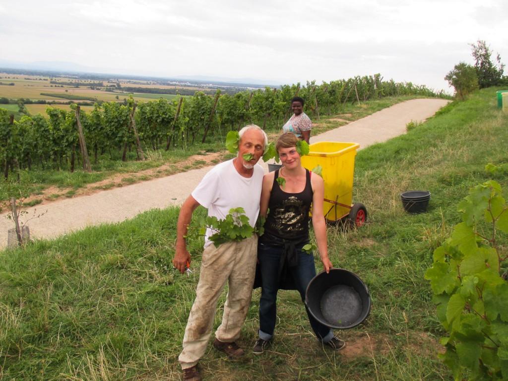 On s'amuse dans les vignes...